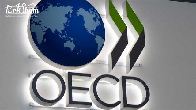 منظمة التعاون الاقتصادي والتنمية تعتزم فتح مركز لها في إسطنبول