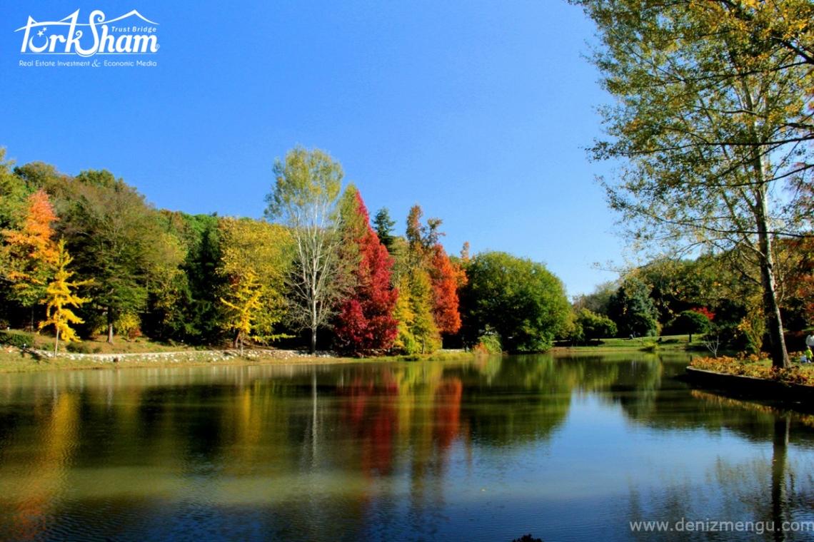 غابات بلغراد المتحف الخريفي الطبيعي
